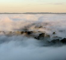 Mystery World - Mount Barker by LeeoPhotography