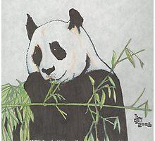 Panda! Photographic Print