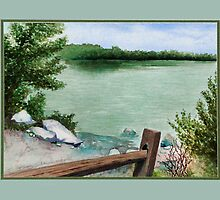Lake Seminole by Ginny Schmidt