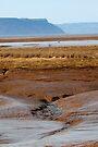 Cliffs Of Blomidon, NS by Darlene Ruhs