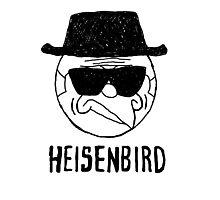 Heisenbird - Mordecai Photographic Print