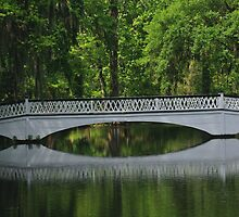 Magnolia Plantation Bridge by photosan