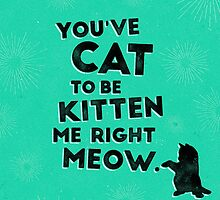 You've Cat to be Kitten me Right Meow by Shawna Armstrong