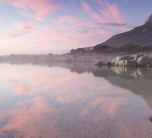 Tidal Pool Panoramic by louishiemstra