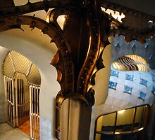 CASA BATLO by robshakespeare