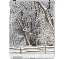 Winter - Westfield, NJ - Snow Day iPad Case/Skin