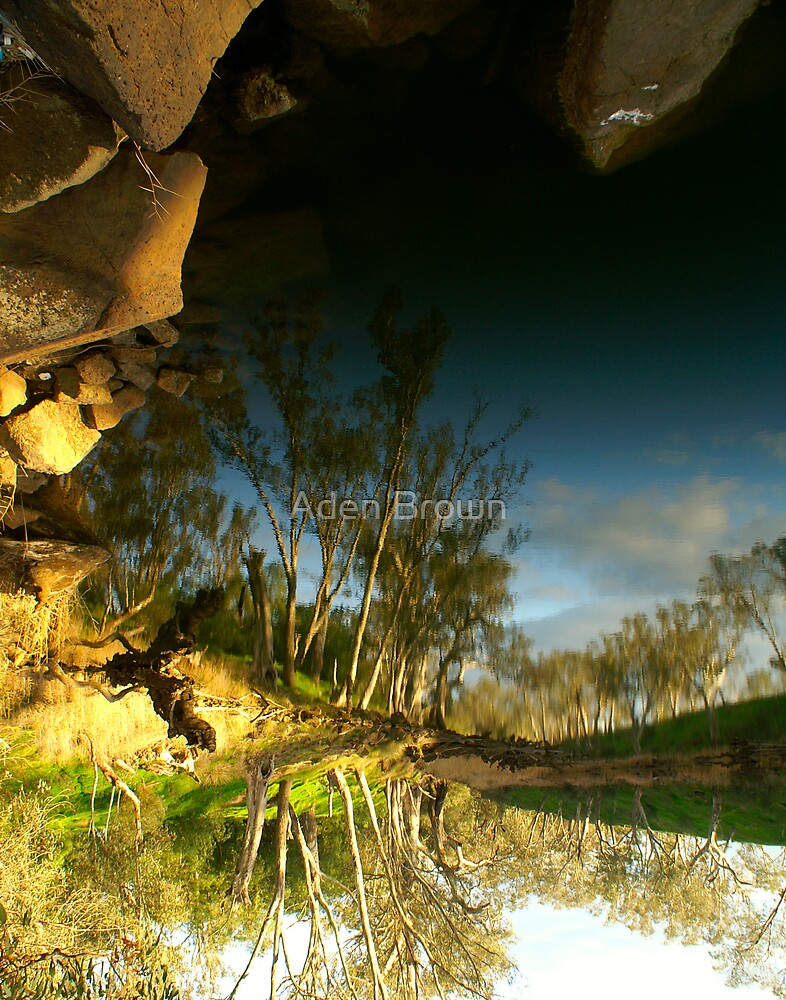 Loddon River Reflection by Aden Brown