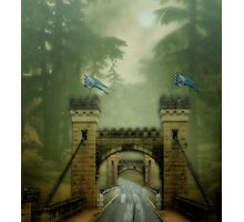 The Road to Camelot Photographic Print
