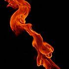 Striking Dragon by Aden Brown