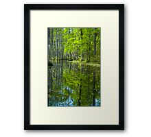 The Reflecting Pool © Framed Print
