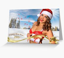 Sexy Santa's Helper girl great image for creating Holiday Greeting postcards or computer wallpapers Greeting Card