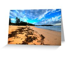 Palmie - Sydney Beaches - Palm Beach, - The HDR Series - Sydney,Australia Greeting Card