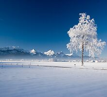The Romantiche Snowscape by Lachlan Doig