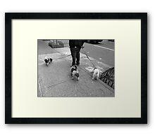 New York Street Photography 36 Framed Print