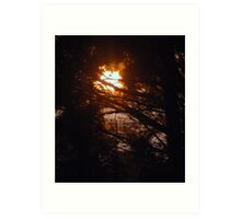 Sunrise through the   trees  Art Print