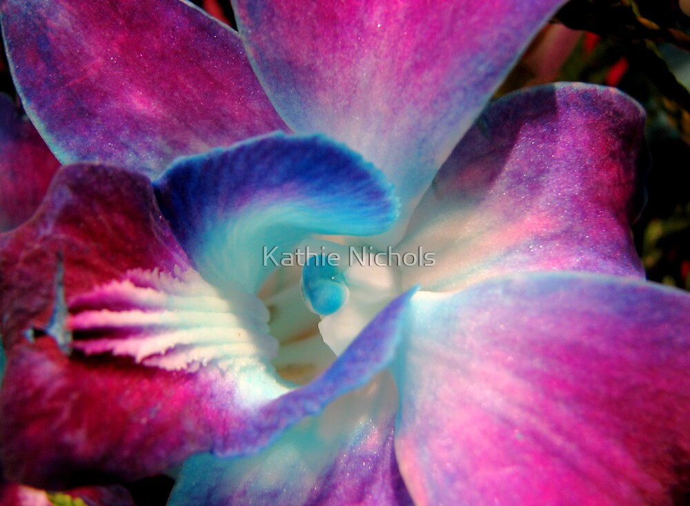 Singapore Orchid by Kathie Nichols