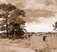 Old Rock house #1 by DanTheBugleMan