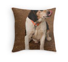 coon hound Throw Pillow