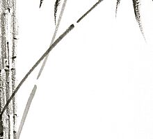 Bamboo 3 by Tom Meyers