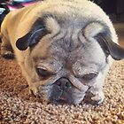Sleepy Pug by Lagoldberg28