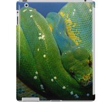 Emerald Trouble iPad Case/Skin