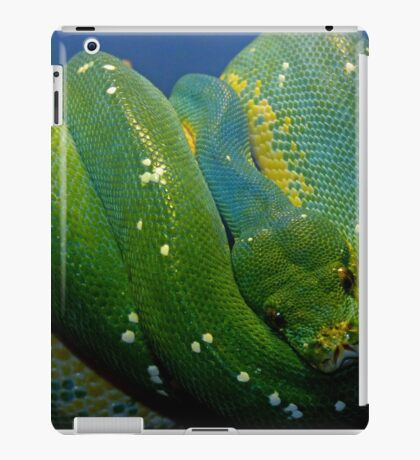 Emerald Trouble iPad Case/Skin
