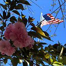 Flag in the background and flowering tree by spiritsfreedom