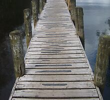 Walkway to Windermere by Tanya Housham