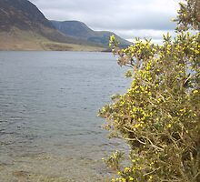 Crummock Water by Tanya Housham