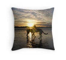 sundance Throw Pillow