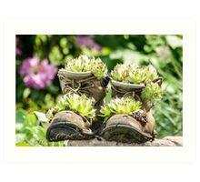 Planter Boots Art Print