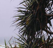Sea Pineapple Sticker