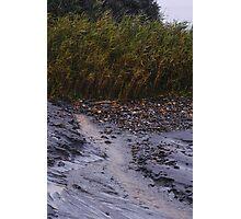 Natural wall Photographic Print
