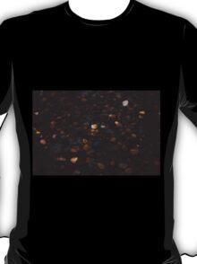 Pebbles. T-Shirt