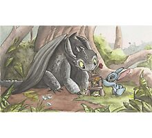 Toothless & Stitch Photographic Print