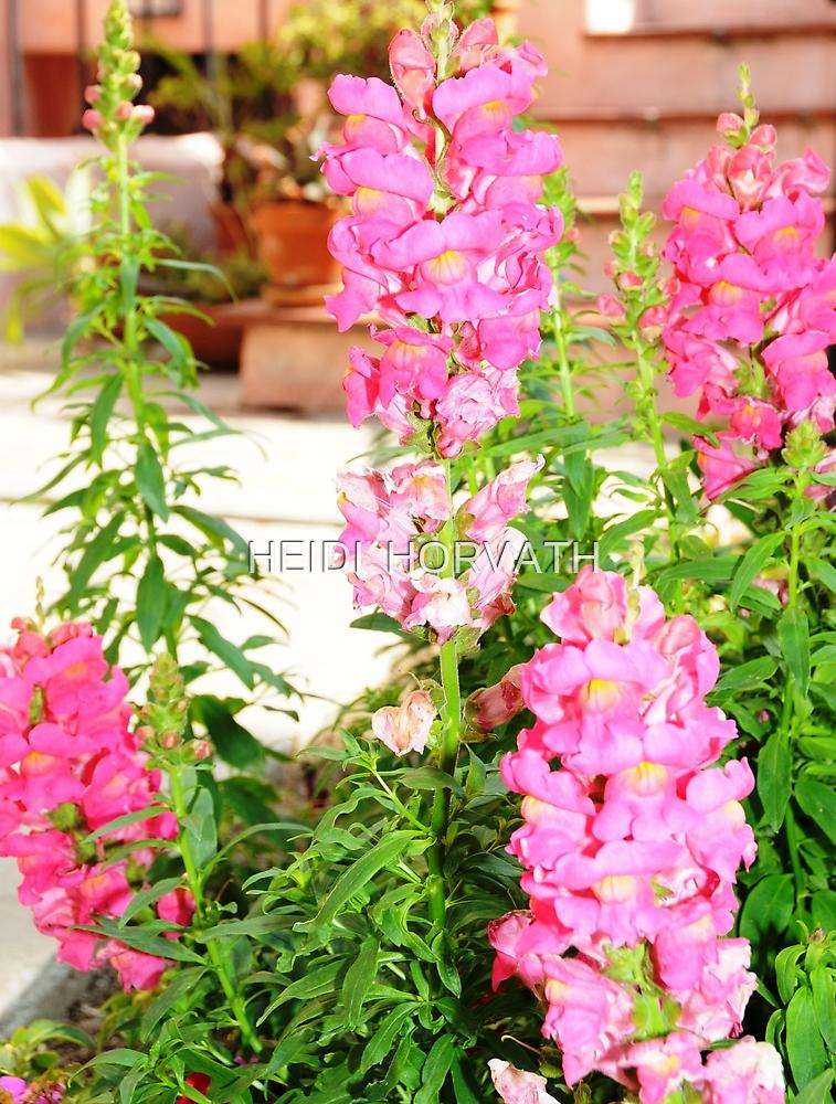 Pink Pleasures by HEIDI  HORVATH