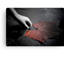 A Treasure To One  Canvas Print