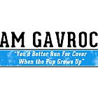 Team Gavoche by GenialGrouty