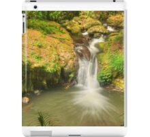 Bunyip Falls at Lamington iPad Case/Skin