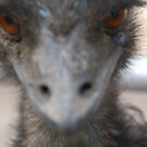Emu U too... by angela tharp