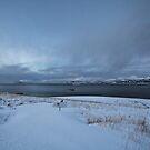 The distant bridge by Frank Olsen