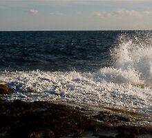 WaveDance by Alvin-San Whaley