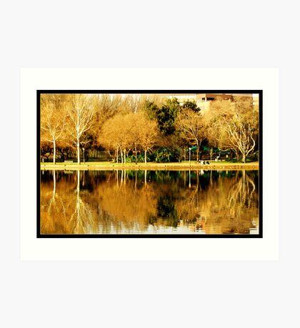 Lakeside reflections Art Print