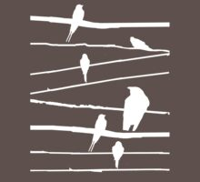 Birds on wire in white by loganhille