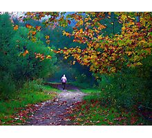 Autumn Path Photographic Print