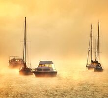 Into the Mist by Heather Prince