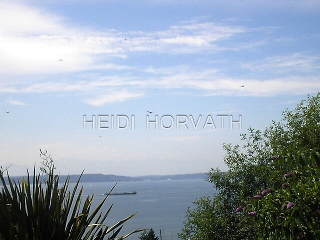 Dragonflies in Alki Beach by HEIDI  HORVATH