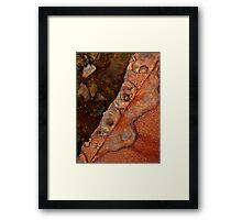 Rust 1 Framed Print