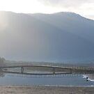 Bridge Reflection Tidal River by Catherine Davis