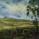 Storm brewing, Mudgee, NSW by Terri Maddock